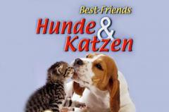 Best friends: Dogs & cats