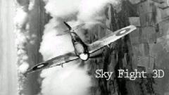 Sky Fight 3D