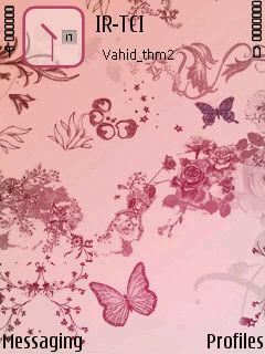 Pink Butterflyflower