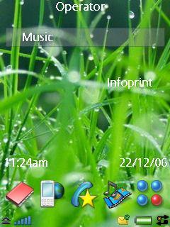 Vista Grass