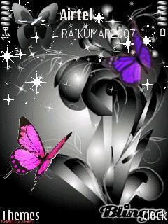 Black N Butterfly