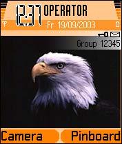 Eagle Theme