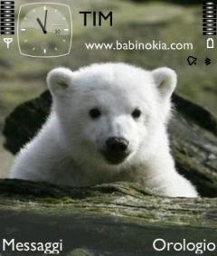Knut Theme