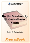 On the Seashore for MobiPocket Reader