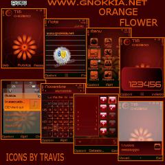 Orange Flower Theme
