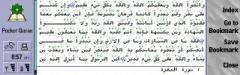 Pocket Quran (S80)