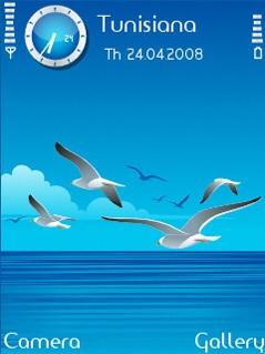 Seagulls SVG Theme