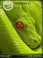 Snake QVGA Theme