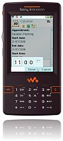 Sony Ericsson W950 Skin for Remote Professional