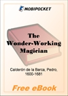 The Wonder-Working Magician for MobiPocket Reader