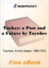 Turkey: a Past and a Future for MobiPocket Reader