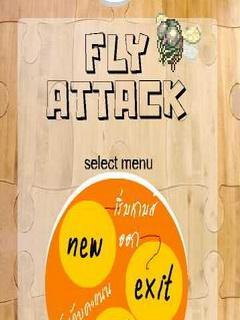 Fly Attack