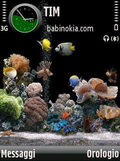 Acquariov2 By Babi