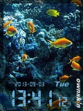 animated aquarium.....