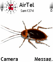 Animated Cockroach