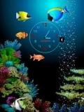 Aquarium flash