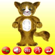 BangMe (Cat)