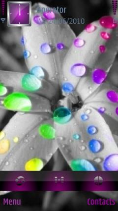 Beautiful Flower