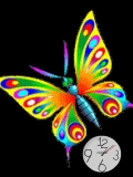 butterfly animated.....