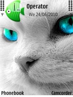 Cat Eyey