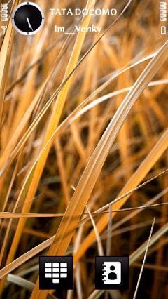 Dry Grasss By Venky
