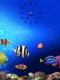 fish at sea