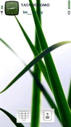 Green Grass Theme