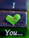 I Love U FlasH