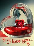 ** i~love~you **