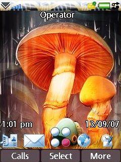 Mushroom Minuscule