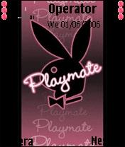 Playmate New