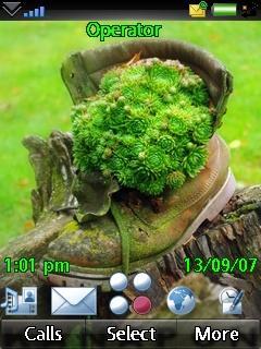Shoe Nature