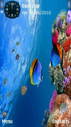 Under Water Life